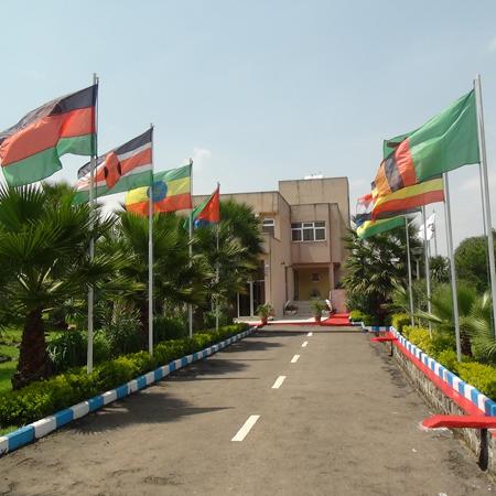 Front Addis abeba