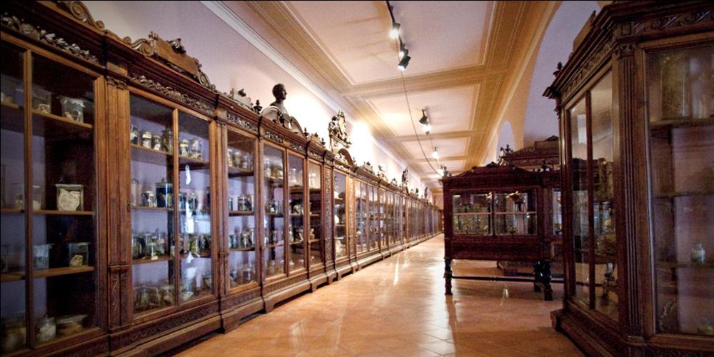 Museo Nazionale Napoli 2